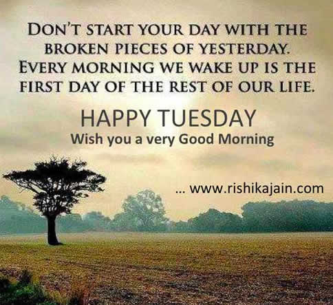Have A Terrific Tuesday!