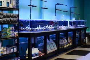 www.jacksonfishandcoral.com Aquarium Supplies
